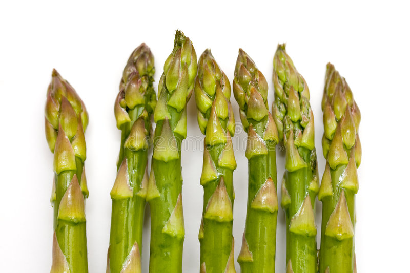 asparagus obraz royalty free