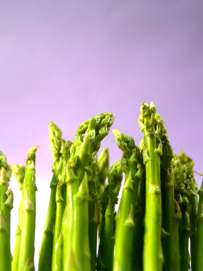 Asparagus 81 royalty free stock image