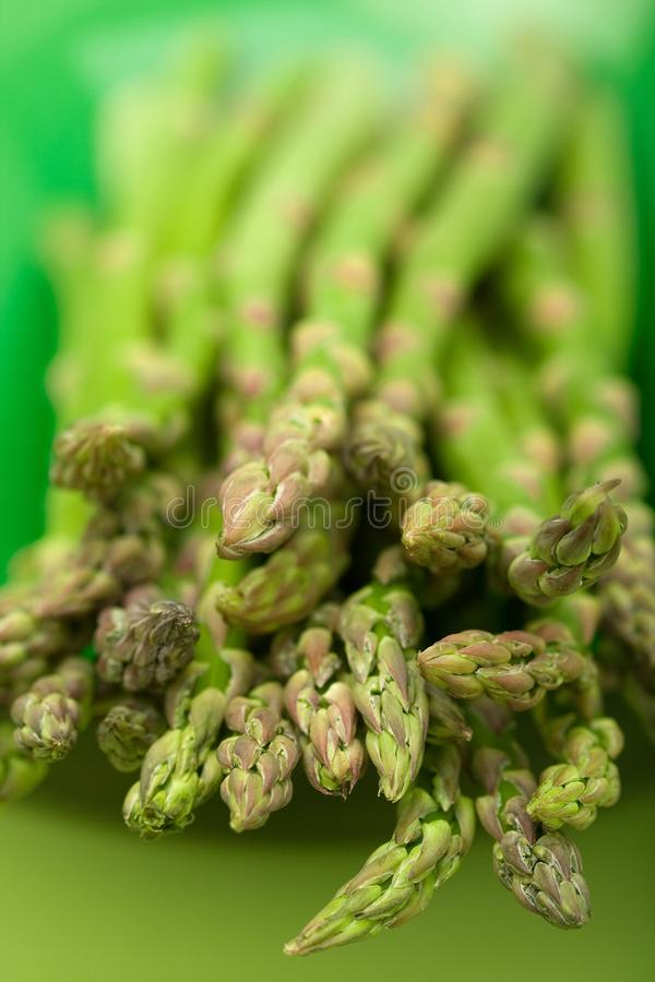 Download Asparagus stock image. Image of spear, healthy, asparagus - 8622411