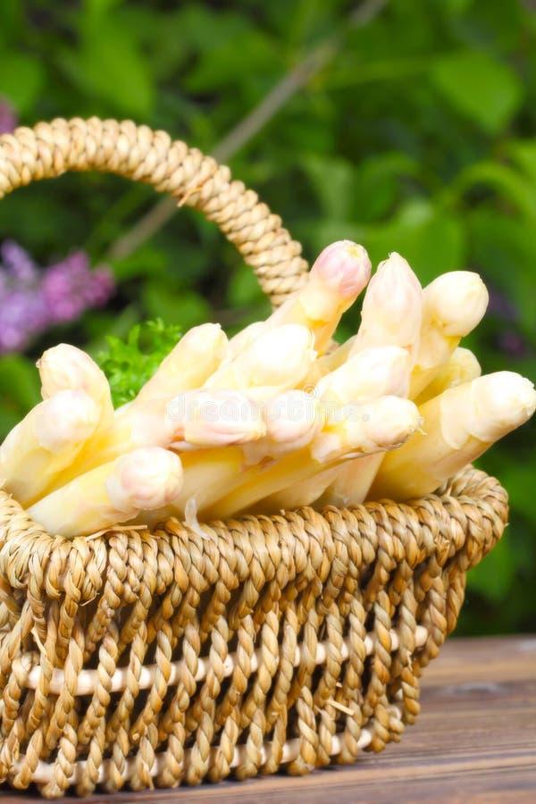 Asparagus basket stock photography