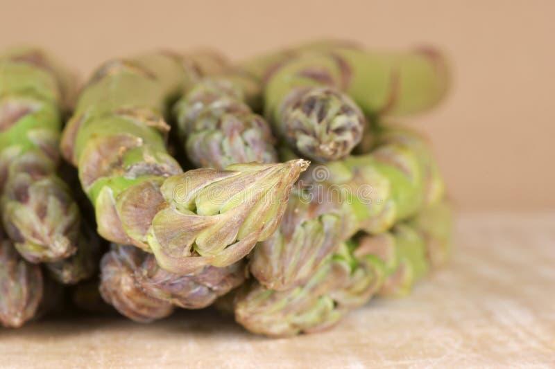 Asparagus Close-up Stock Photography