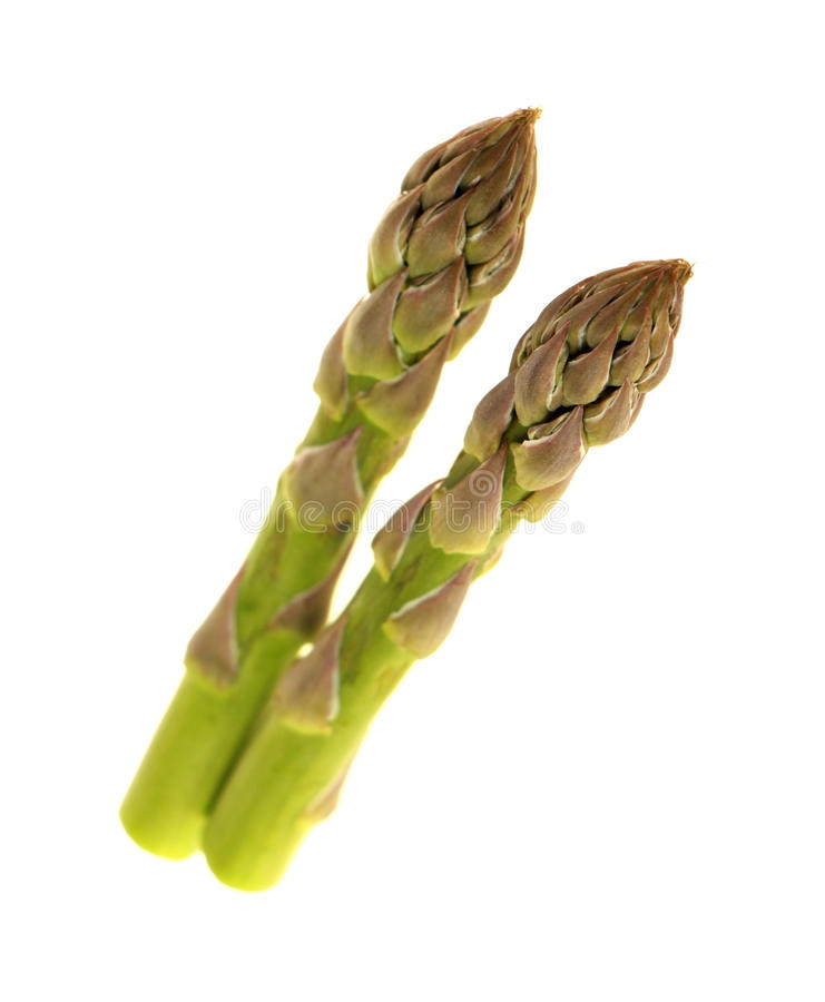 Download Asparagus stock photo. Image of organic, food, health - 39515188