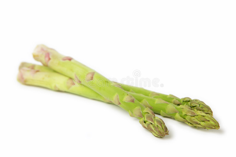 Asparagus isolated on white royalty free stock photography