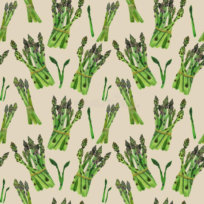 Asparagus na beżowego tła bezszwowym wzorze royalty ilustracja