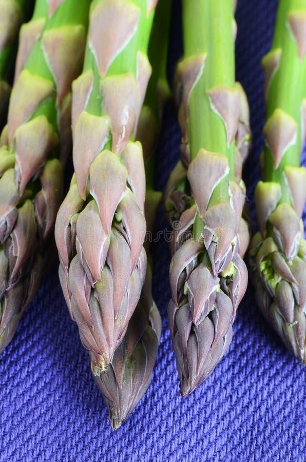 Download Asparagus on purple napkin stock image. Image of closeup - 30674609