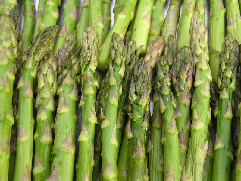 Asparagus spears royalty free stock photography