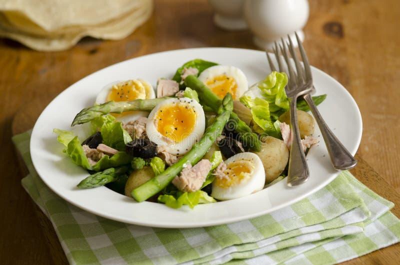 Asparagus and tuna salad stock photos