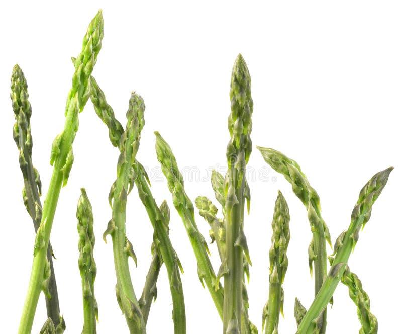 Asparagus Vegetable Cutout royalty free stock photos