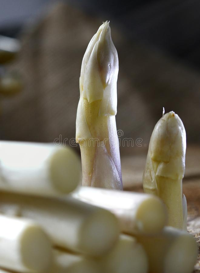 Aspargo branco do marchfeld fotografia de stock