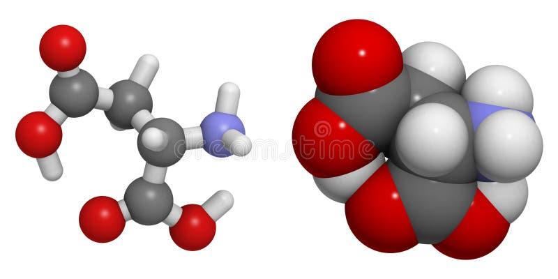 Aspartic syrlig (Asp, D) molekyl royaltyfri illustrationer
