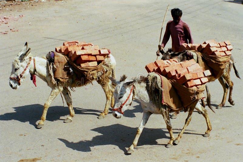 aspekt 1 wiejskich zdjęcie stock