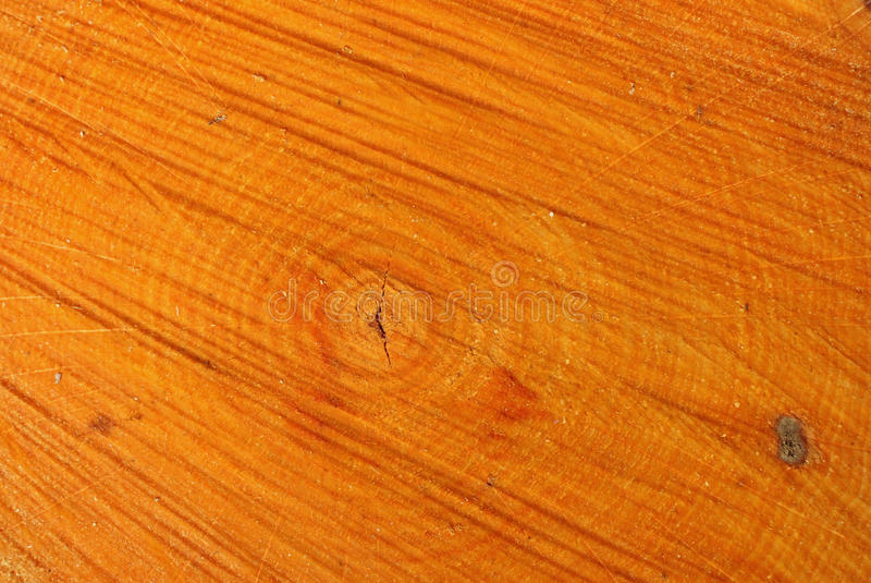 Aspen Log Growth Rings Background stock image