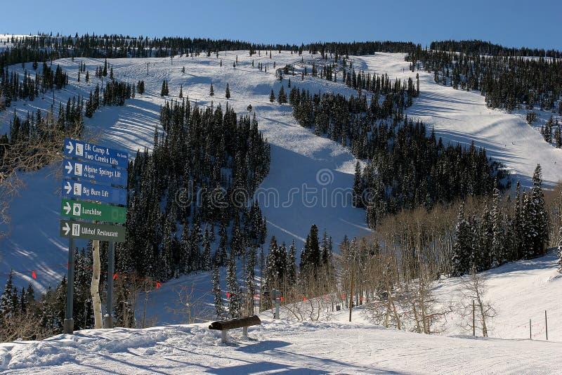 In Aspen Ski fahren, Colorado lizenzfreies stockbild