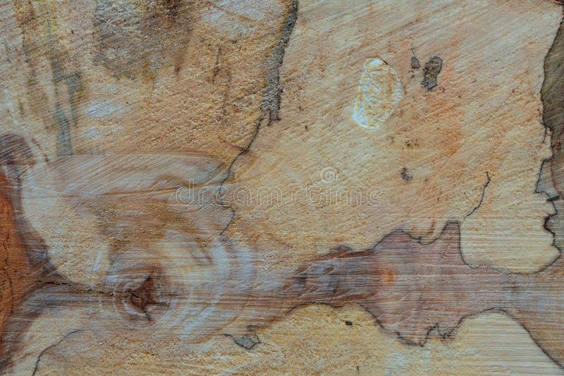 Aspen wood texture. Aspen wood end cut with interesting wooden structure with curly gain for a background royalty free stock photos