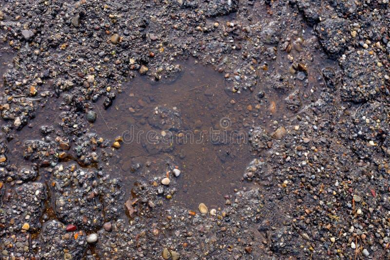 Asphalt. Aging asphalt street urban wet, plus some dirt royalty free stock photography