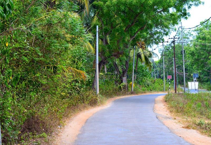 Asphalt Concrete Road scenico tramite pianta intorno - Neil Island, andamane, India fotografia stock