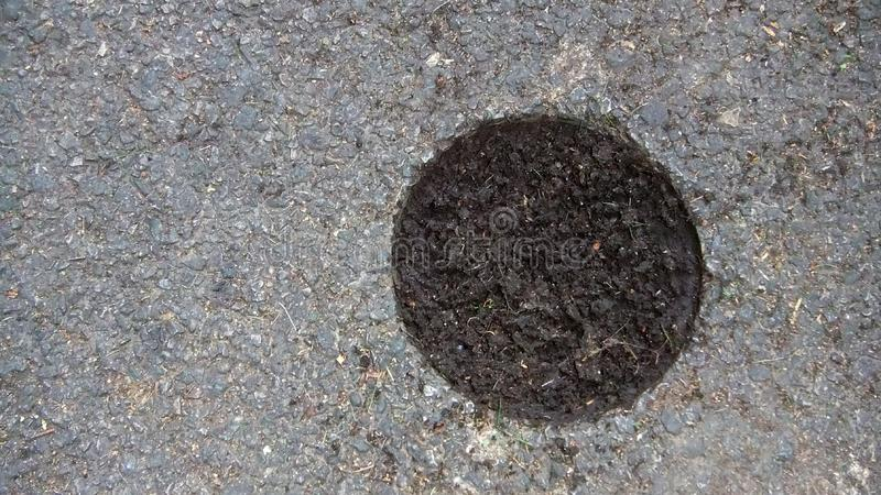 Asphalt cutting for the study of the sample in the laboratory. Core-sampling in big layers - when you can see the soil from. Outside royalty free stock photos