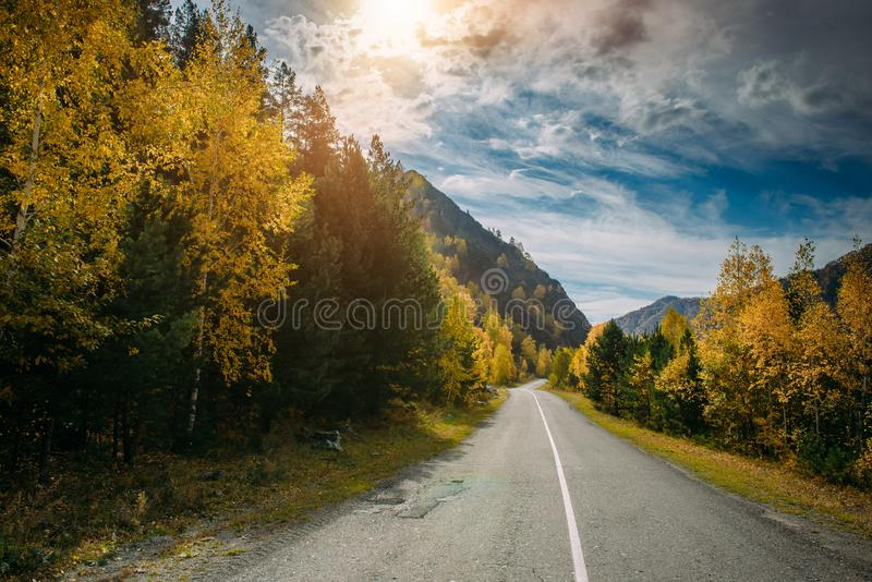Asphalt mountain road among the yellow autumn trees and high rocks, in the bright rays of the sun. Road trip to the beauty. Asphalt mountain road among the stock photography