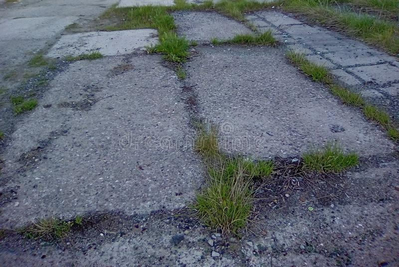 Asphalt path with sprouted grass. Plates of an old asphalt path with stones and wild green grass sprouted in the joints stock photos