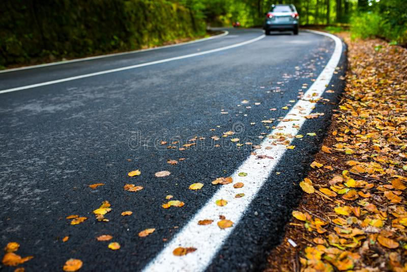 Asphalt  road at early autumn in the deciduous woods, passing car in the background. Focus on the yellow beech leaves stock images