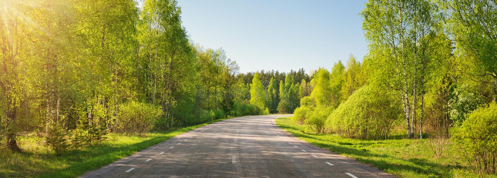 Asphalt road panorama in countryside on sunny summer day royalty free stock photography