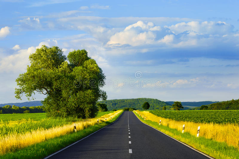 Asphalt road in summer day. Asphalt straight road through the field and clouds on blue sky in summer day stock photo