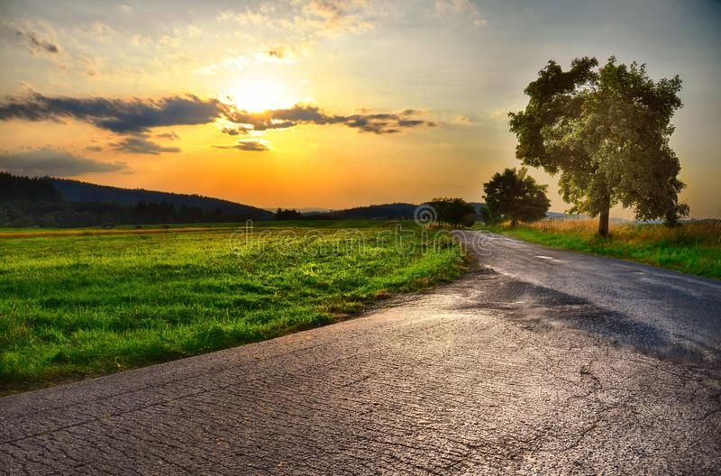 Asphalt road, sunset over meadow and broad leaf tree at summer evening, sky, green grass.Relaxing atmosphere. Countryside landsc stock photography