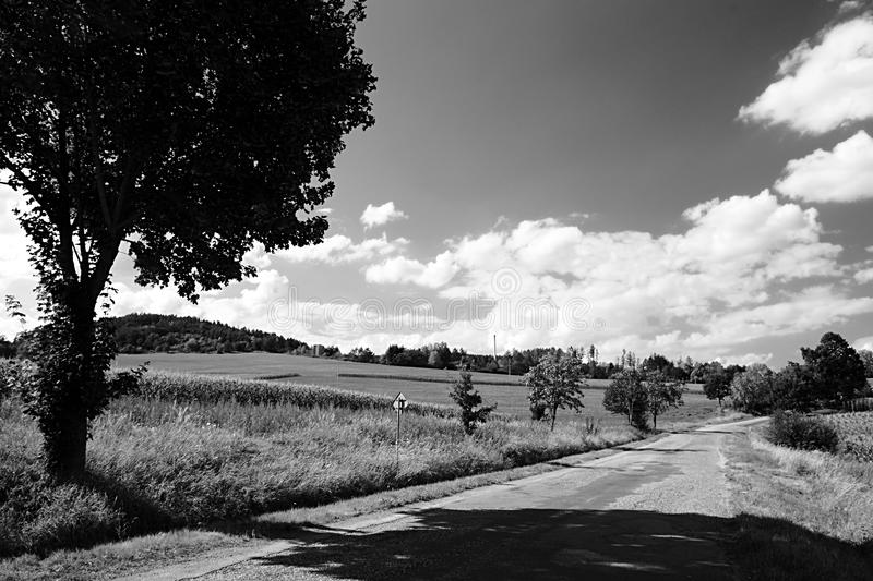 Asphalt road between trees and fields leading to buildings of former school in nature near Volyne city in Czech rebublic on 11th. August 2018 during summer stock photography