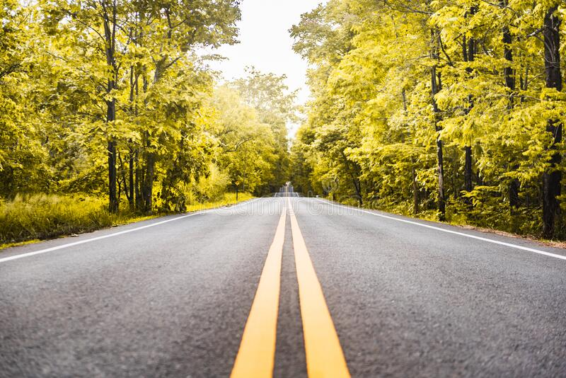 Asphalt road with yellow diving line and forest. Background stock photos