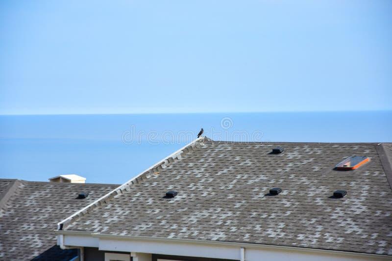 Asphalt roofing shingles stock photography