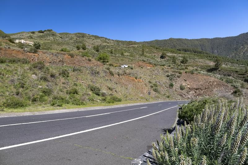 Asphalt scenic road on the island of Tenerife royalty free stock photos