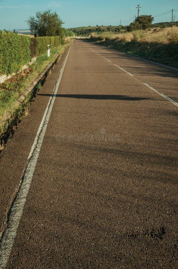 Asphalte sur une route à côté de fossé et de buissons verts photographie stock
