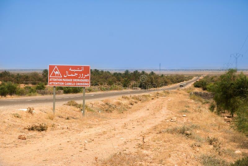 Asphaltez la route dans le désert avec le signe rouge du passage des chameaux photographie stock libre de droits