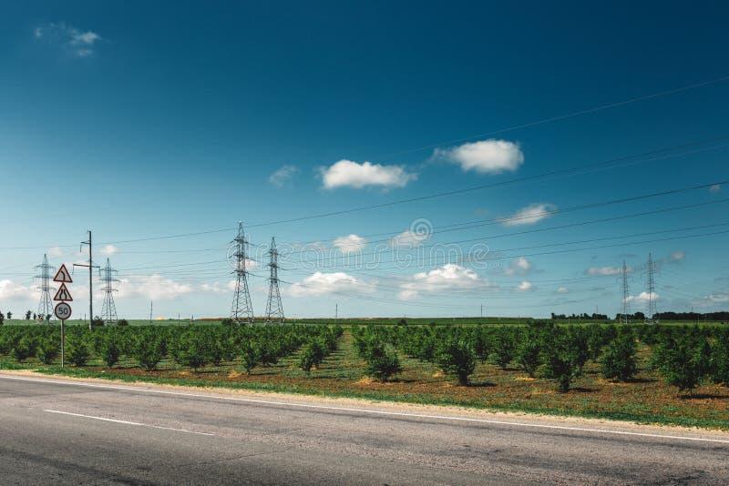 Asphaltstraße, überschreiten durch die grünen Weinberge, malerische industrielle landwirtschaftliche Landschaft stockbild