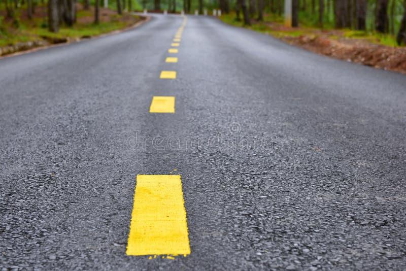 Asphaltstraße mit gelber Linie Markierung auf Straße lizenzfreie stockbilder
