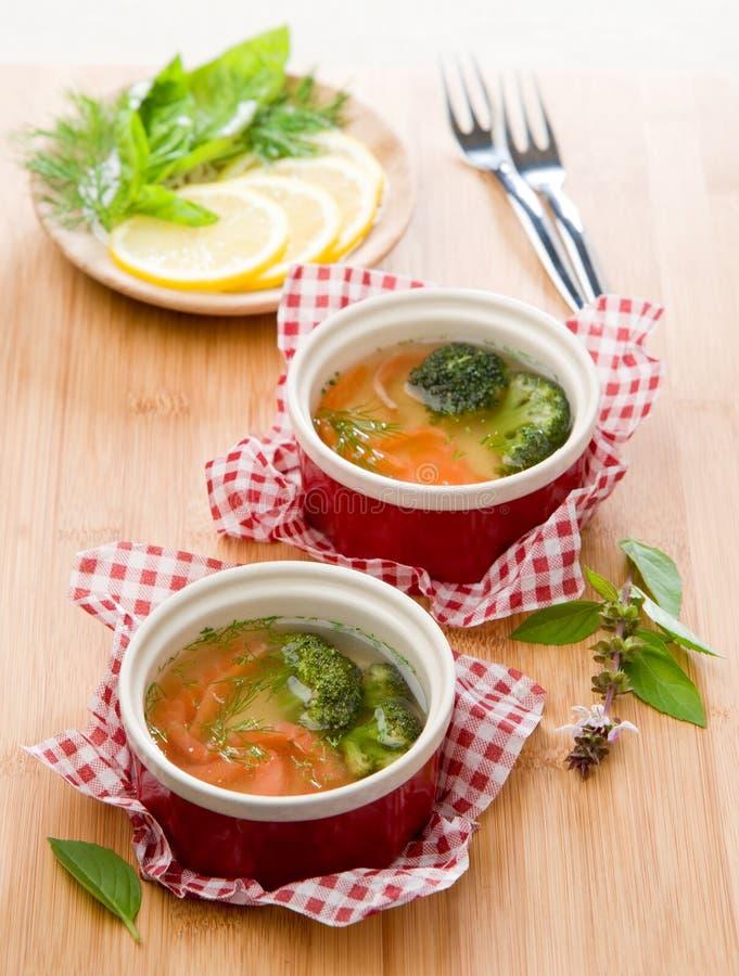 Aspic des saumons avec le chou-fleur et le fenouil photo stock