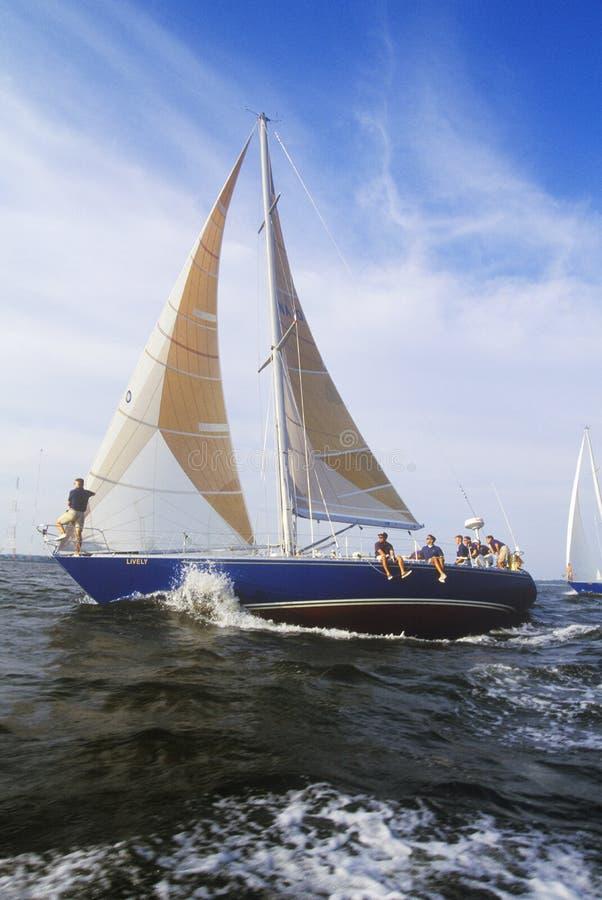 Aspiranti guardiamarina da U S Abilità di navigazione di pratica dell'Accademia Navale nella baia di Chesapeake, vicino a Annapol fotografie stock libere da diritti