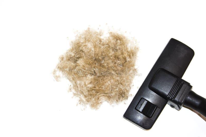 Aspirateur et boule de laine de cheveux d'isolement sur le backgroun blanc photographie stock