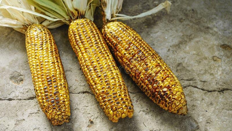 Assado, grade do milho, macro, BBQ América, piquenique, Dia do Trabalhador, ação de graças fotografia de stock