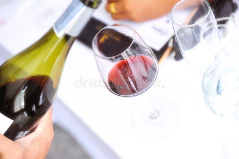 Assaggiando il vino bianco versi dentro un vetro, versante il vino bianco da vino immagine stock