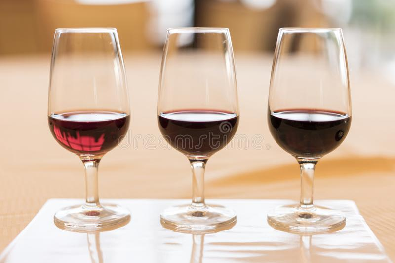 Assaggio di enologia di grandi annate d'annata del vino rosso immagine stock libera da diritti