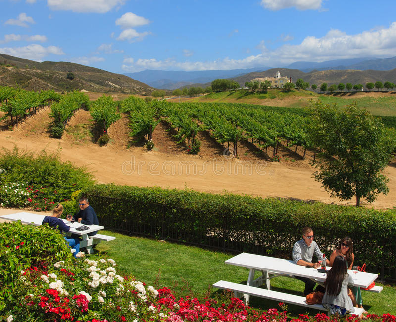 Assaggio di vino, California fotografie stock libere da diritti