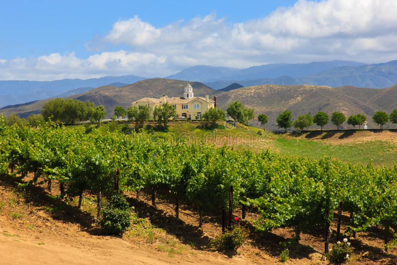 Assaggio di vino, California immagine stock