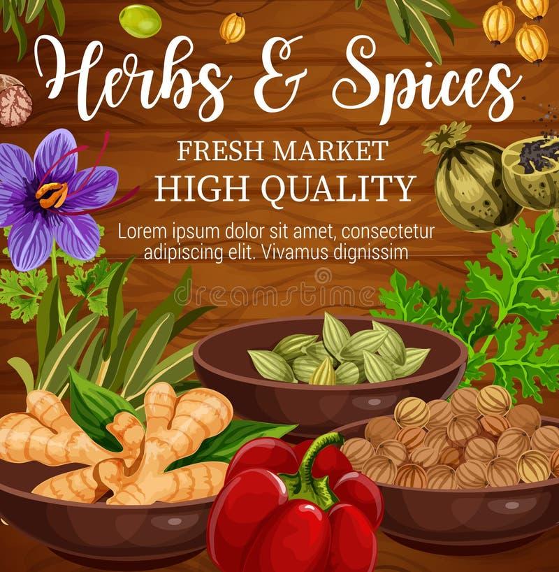 Assaisonnement de nourriture d'herbes et d'épices, fond en bois illustration de vecteur