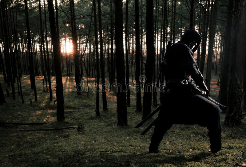 Assassin in the deep forest. Assassin with two swords in the deep forest stock images