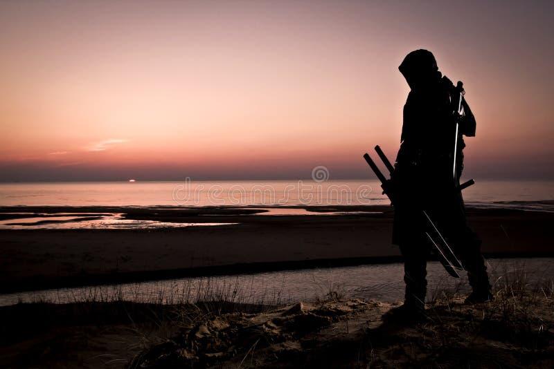 Assassino al mare fotografie stock libere da diritti