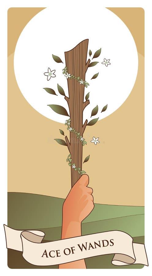 Asse von Tarock-Karten wands Hand, die eine Stange umgeben durch Blätter und Blumen auf Sonne und grünes Feld im Hintergrund hält lizenzfreie abbildung