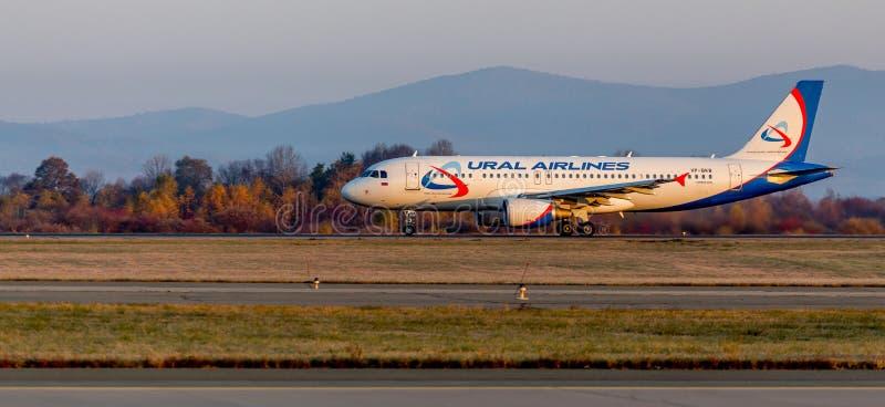 Assenger-Düsenflugzeug Boeing 737-800 von NordStar-Fluglinien auf der Rollbahn Rumpf wird als Hundsibirischer husky gemalt stockfotografie