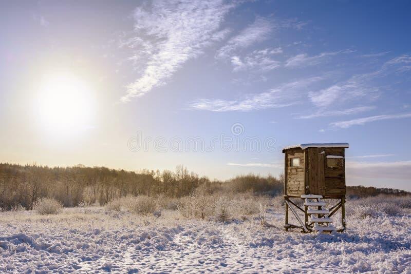 Assento alto em uma paisagem coberto de neve do inverno contra um céu azul com um sol morno, espaço do caçador da cópia fotografia de stock royalty free