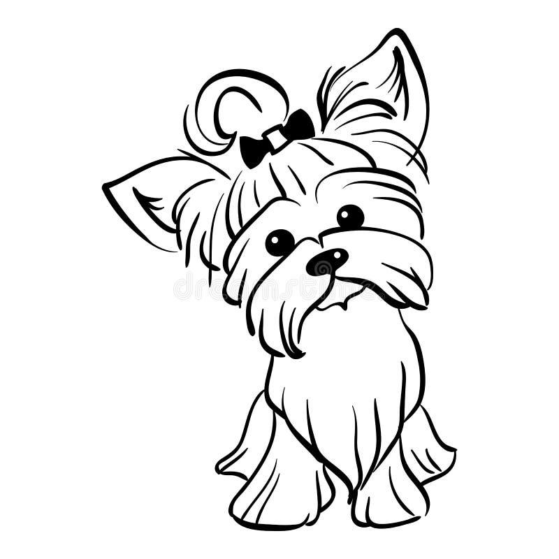 Assento engraçado do cão do yorkshire terrier do esboço do vetor ilustração royalty free